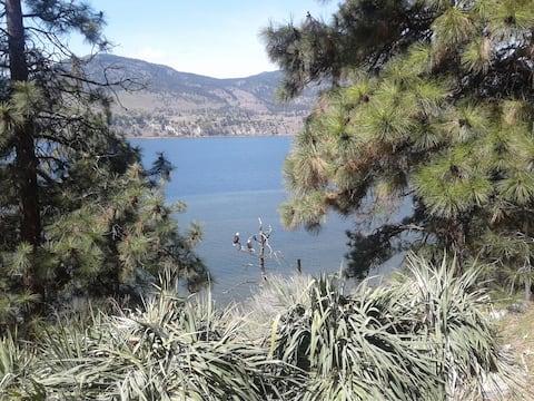 Skaha Eagle View Retreat