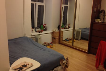 Квартира-студия на Петроградке. - Sankt-Peterburg - Apartment