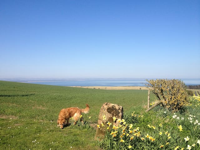 Farmhouse B&B with sea views. - Saint Andrews - Bed & Breakfast