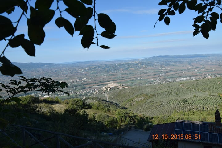 SURROUNDED BY NATURE panorama *****