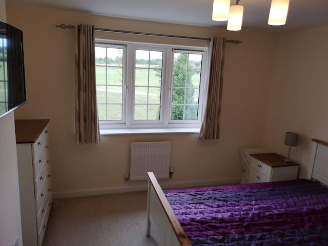 Weekday Professional room available