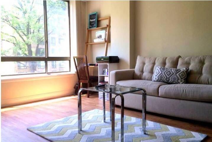 Private room in bright apartment