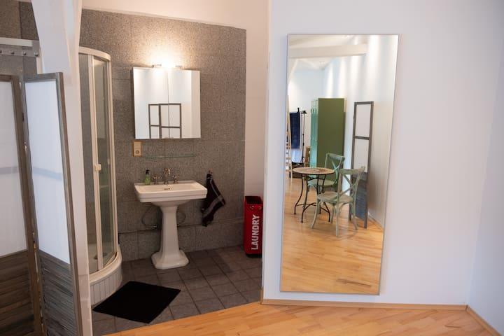 Dusche und Waschbecken (rechts Tür zum WC)