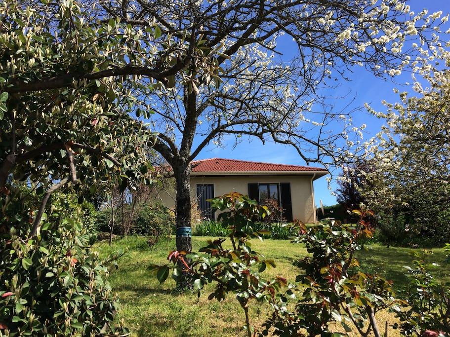 Maison entre saint etienne et lyon huizen te huur in for Maison de la literie st etienne