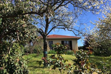 Maison entre Saint-Etienne et Lyon - Saint-Martin-la-Plaine