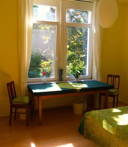 Stilvolles Zimmer in zentraler Lage - Mainz - Kondominium