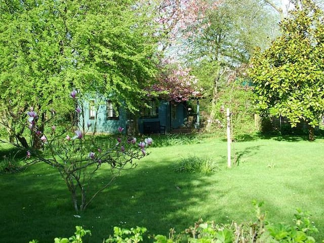 Cosy, quirky, Eco holiday house