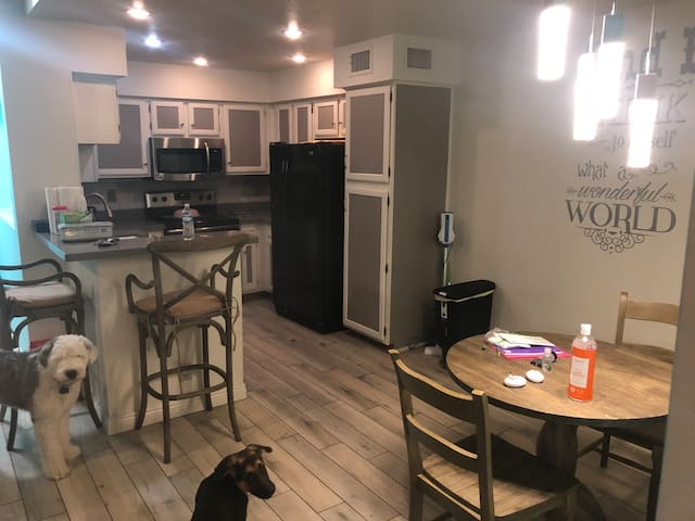 Cozy two bedroom in  Central Scottsdale