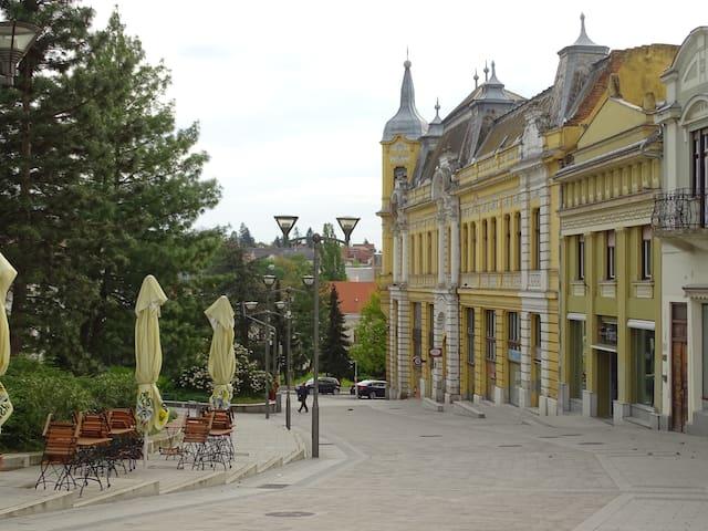 Belvárosi Apartman Veszprémben - Veszprém