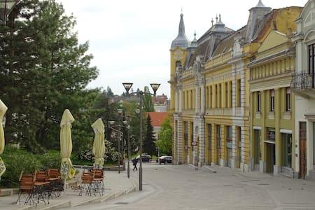 Belvárosi Apartman Veszprémben - Wohnung