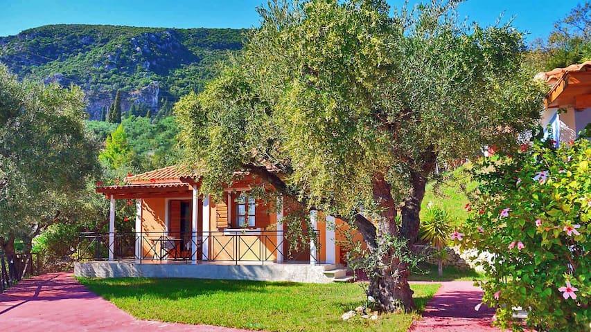 Archontiko villas ,Zakynthos Greece