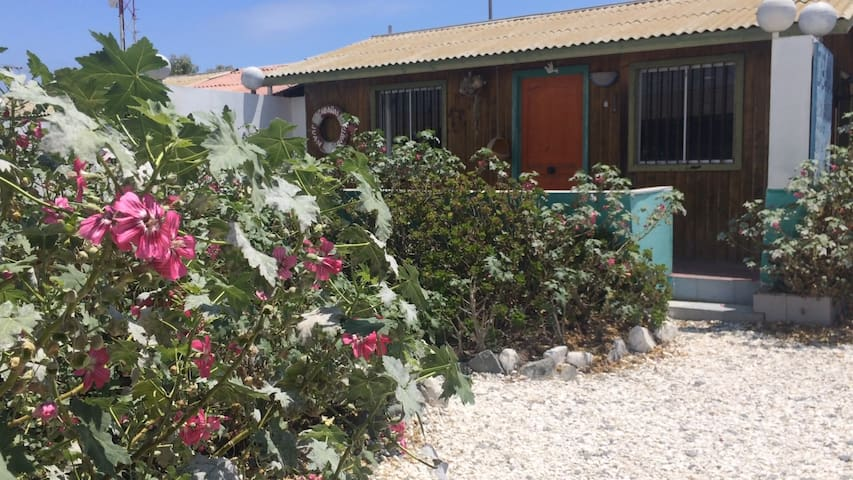 Cabins full nice envoirment close to the beach