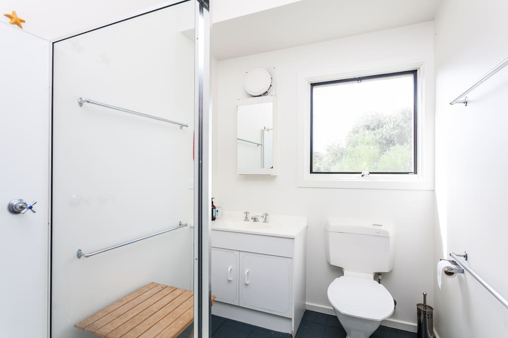 Bathroom (extra shower and toilet too)