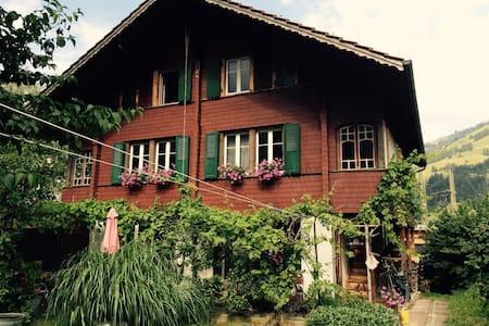 Haus mit schönem Garten - Frutigen - Rumah