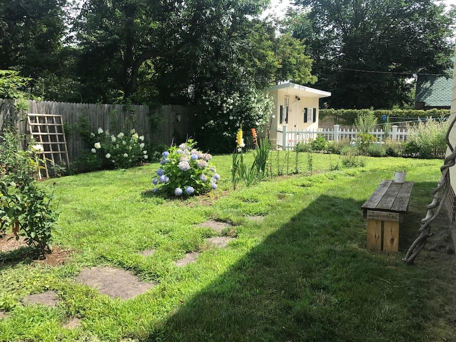Our peaceful backyard