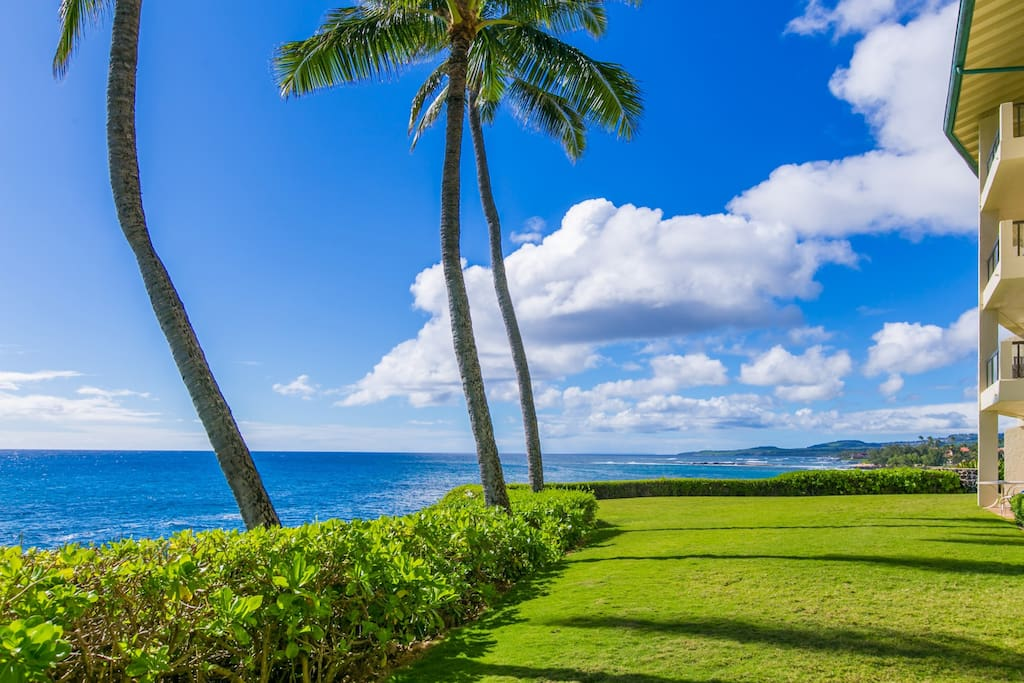 Can you Imagine Being Right Here at Poipu Shores 102A