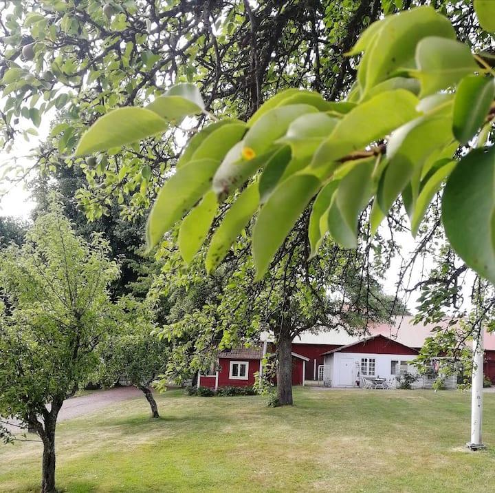 Mysigt gårdshus i trädstaden Hjo