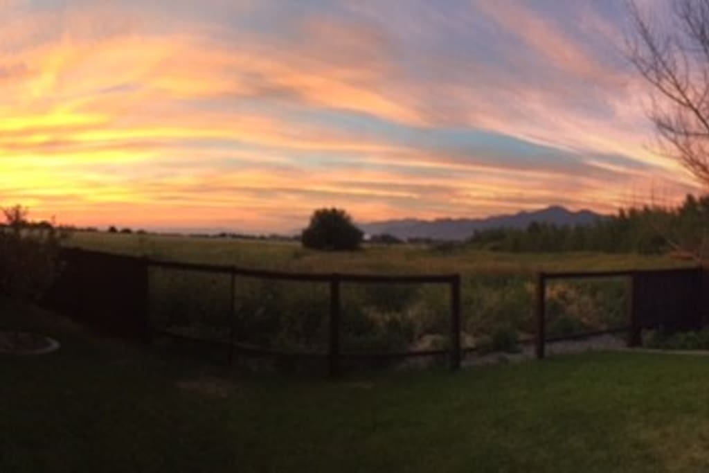 The view from the back porch.