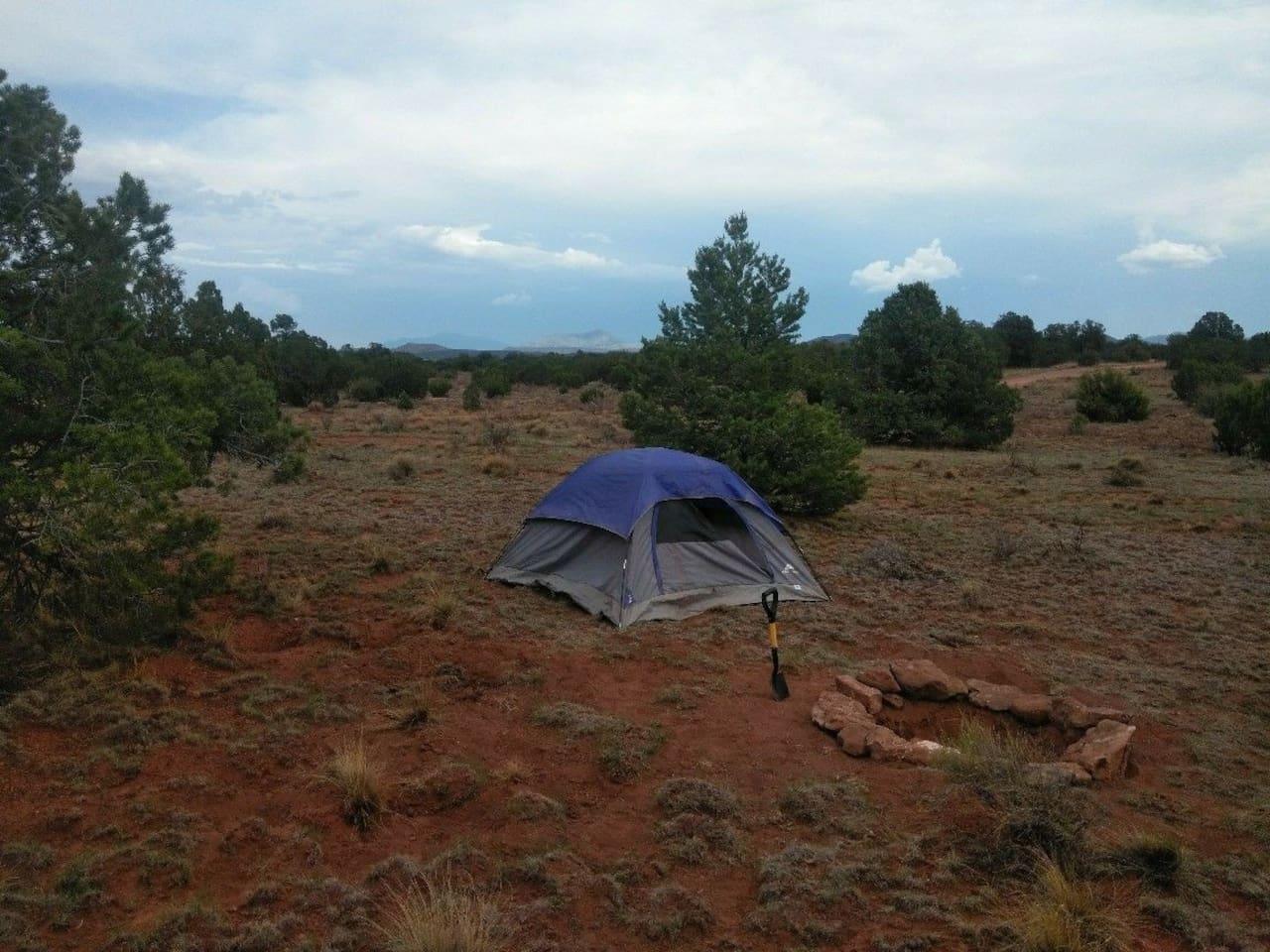 Campsite Hummingbird (Tent not included)
