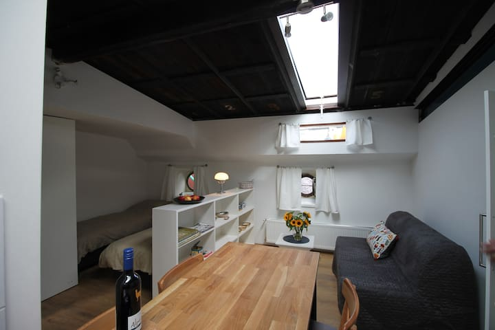 Cosy houseboat studio in the old city center