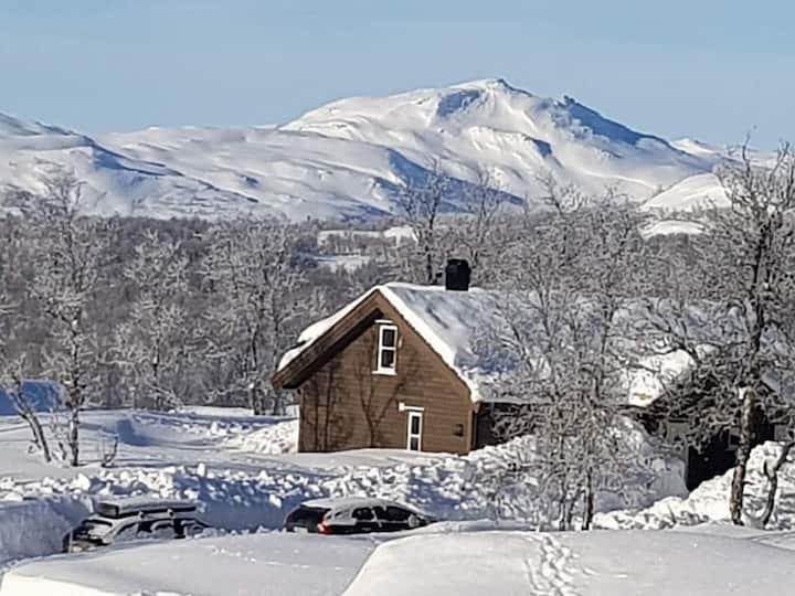 Hytte Leveldåsen, Ål, Hallingdal