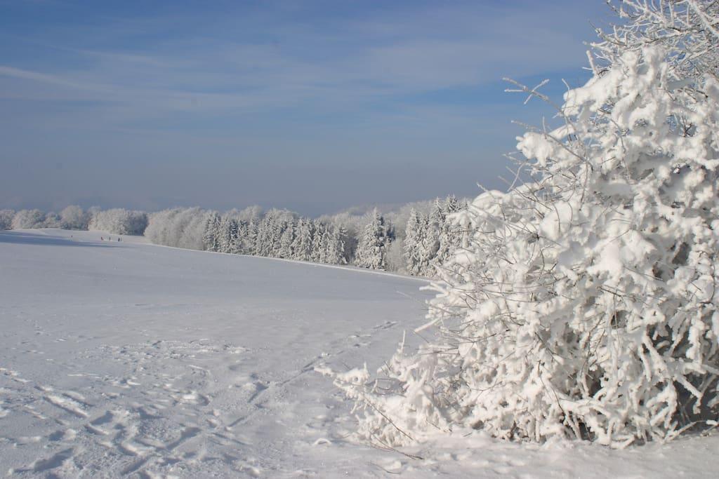Im Winter hinterm Haus!