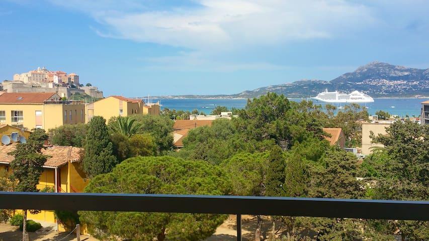 Studio + terrasse vue mer 200m plage de Calvi