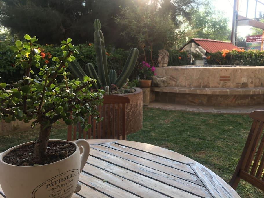 Jardín interior con JacuZzi a temperatura ambiente