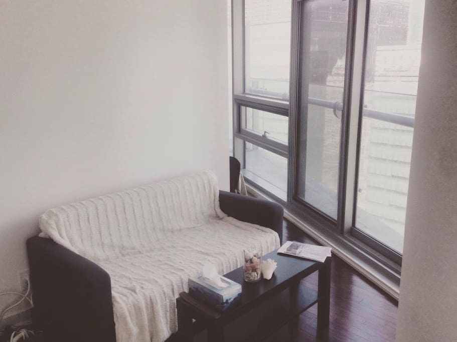Lovely One Bedroom Condo Downtown Flats For Rent In Toronto Ontario Canada