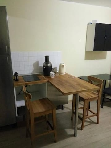 Studio in Primorsky district - Sankt-Peterburg - Apartment