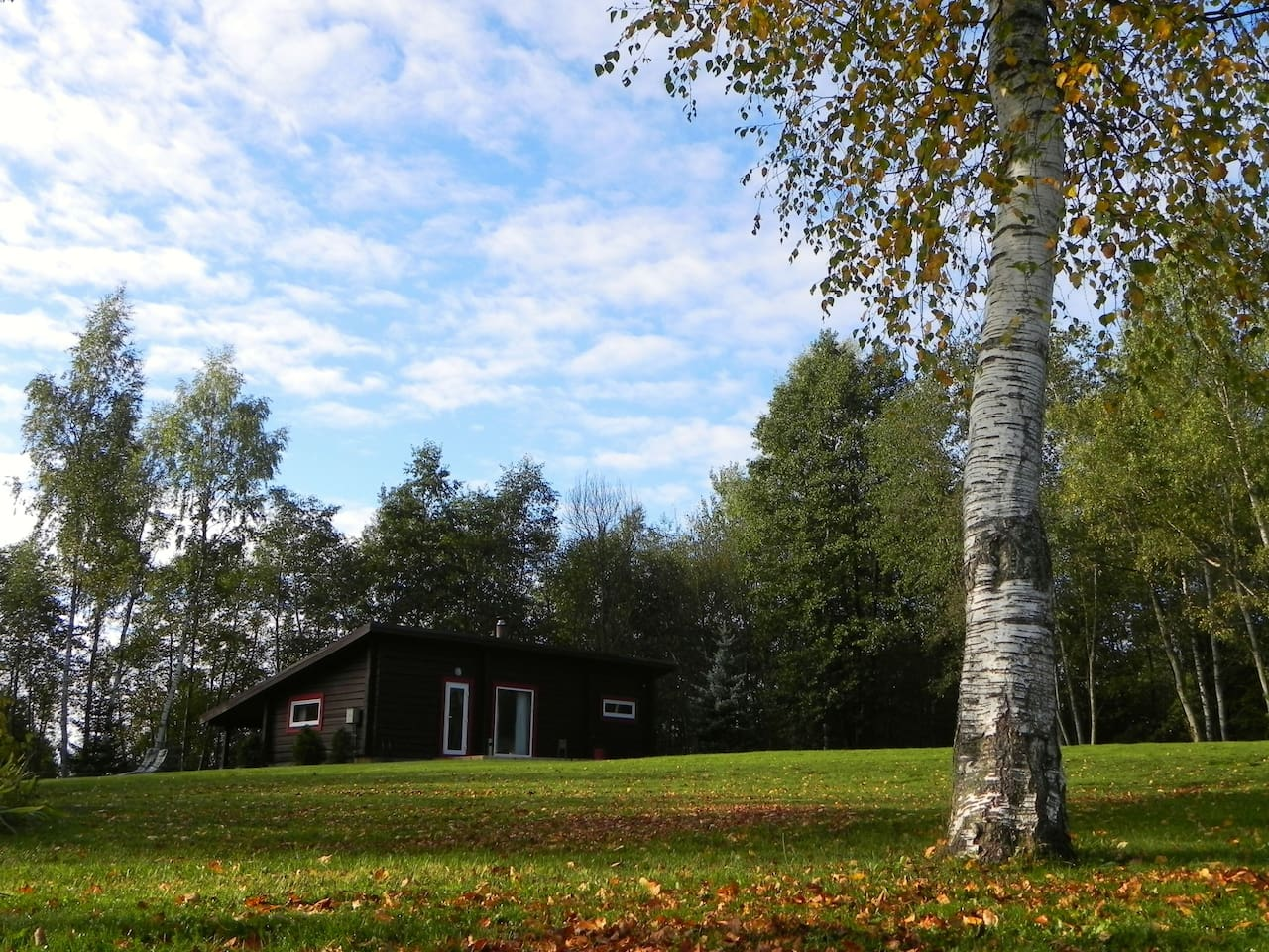 Log houses in old farmstead