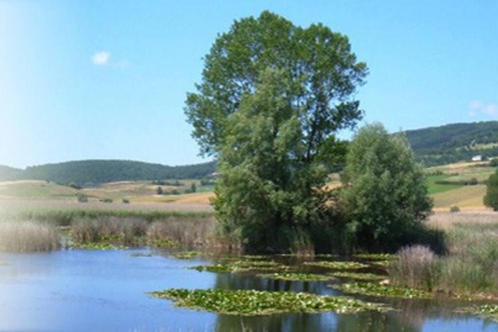 Scorcio dell'oasi naturalistica di Colfiorito