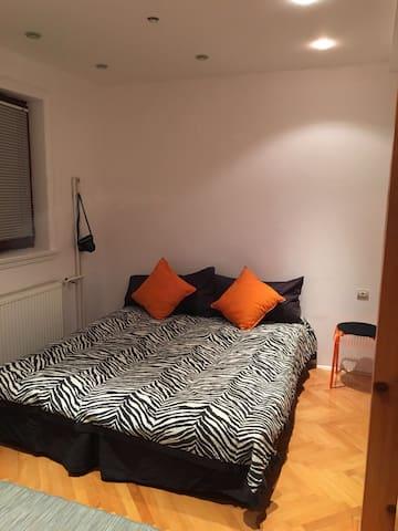 Vrnjacka Banja, 3 lovely rooms - Vrnjacka Banja - Hus