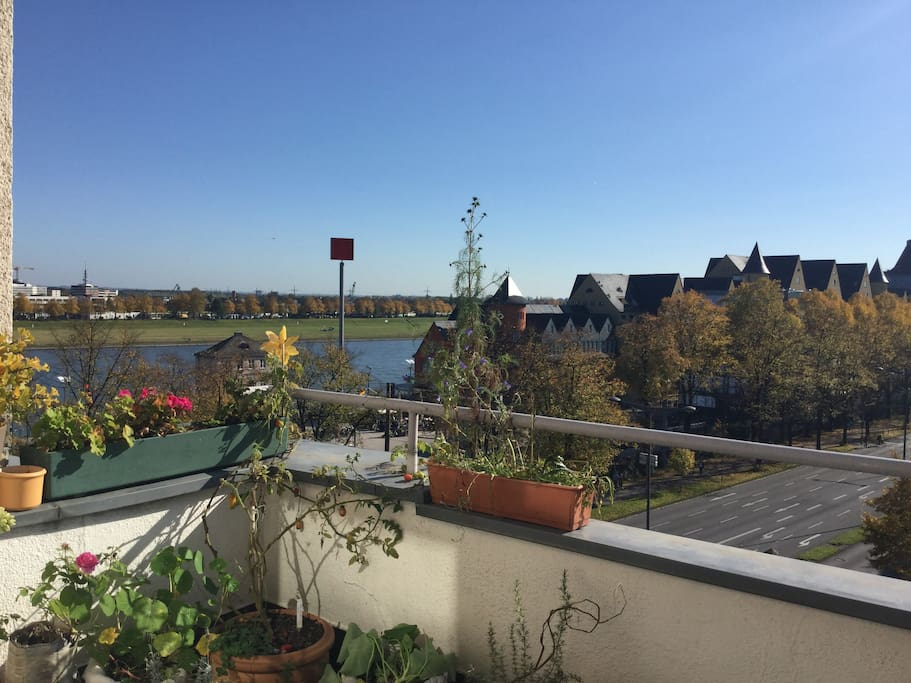 View from the balcony. The River Rhine is on the left. A nice place to go spazieren.