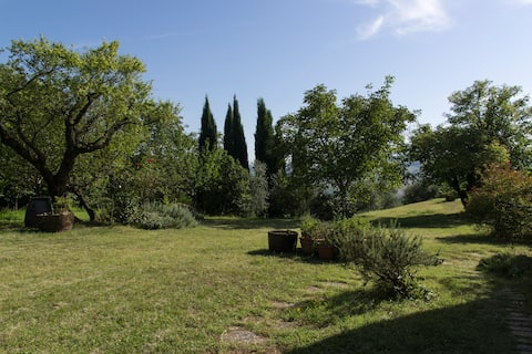 Villa immersed in the Marche hills
