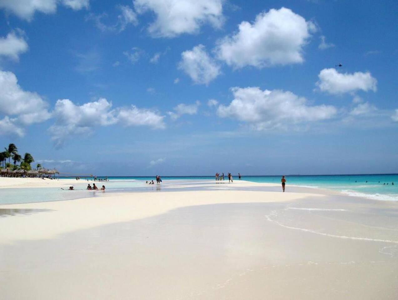 Eagle Beach!..  Rated as the BEST beach in Aruba by TripAdvisor & USA Today.  Not to shabby :)