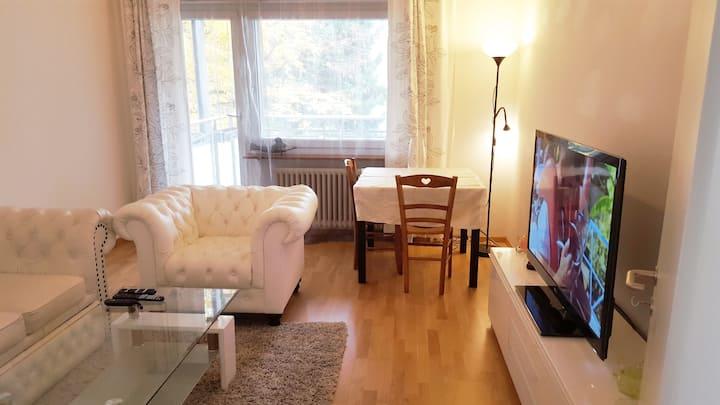 Large 1bed stylish flat near center