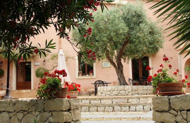 Borgo Levante  : Tra Etna e il mare