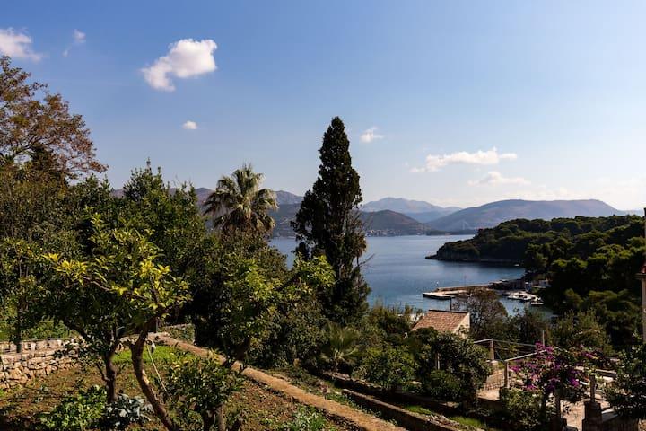 Cosy Villa in Dalmatia with Garden