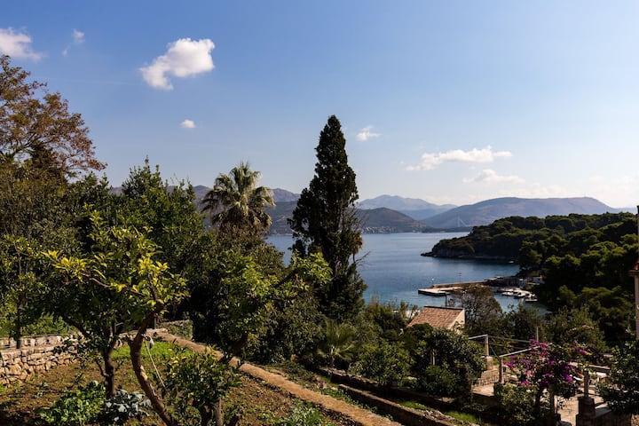 Restful Villa in Dalmatia with Garden