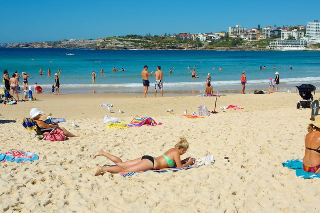 Typical summer's day at Bondi