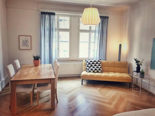 Charming vintage flat next toMesseBasel/citycenter