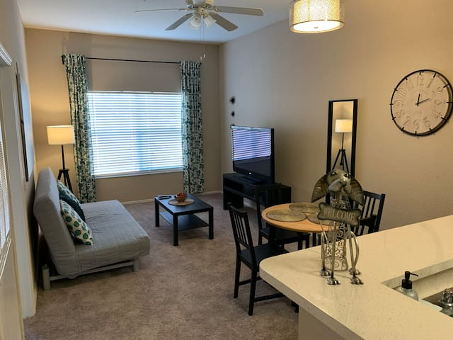 1 bed 1 bath luxury condo 10 min from Disney