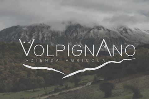 "Rural Mountain Cottage ""Casa delle Volpi"""