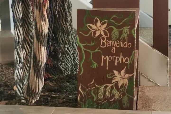 Welcome to Casita Morpho!