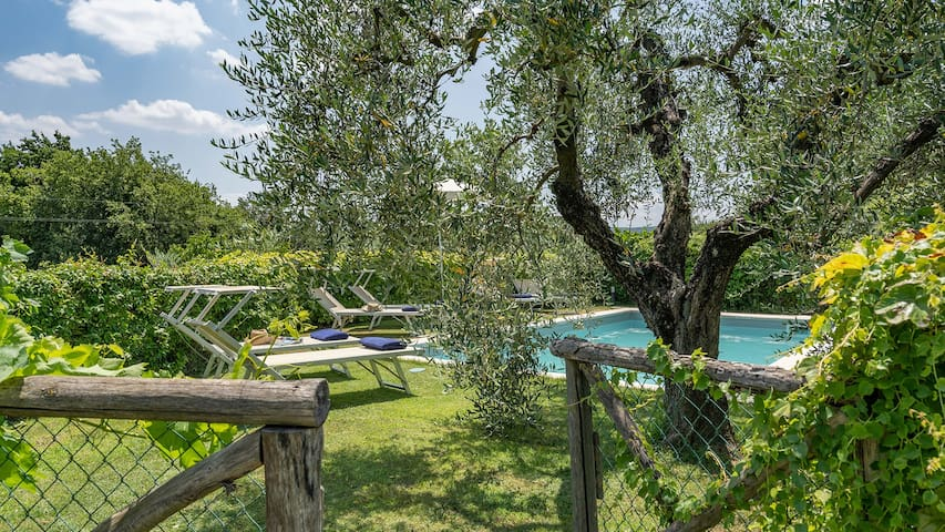 L'OLIVETA 6, Emma Villas Exclusive