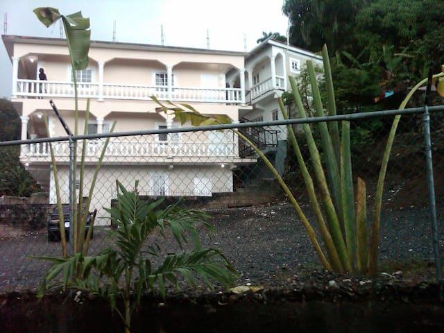 Alexander Court Apartments #1 - Port Antonio - Apartemen