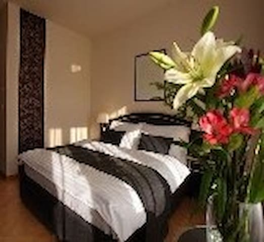 splendida camera con affaccio sul colosseo , black - Roma - Bed & Breakfast