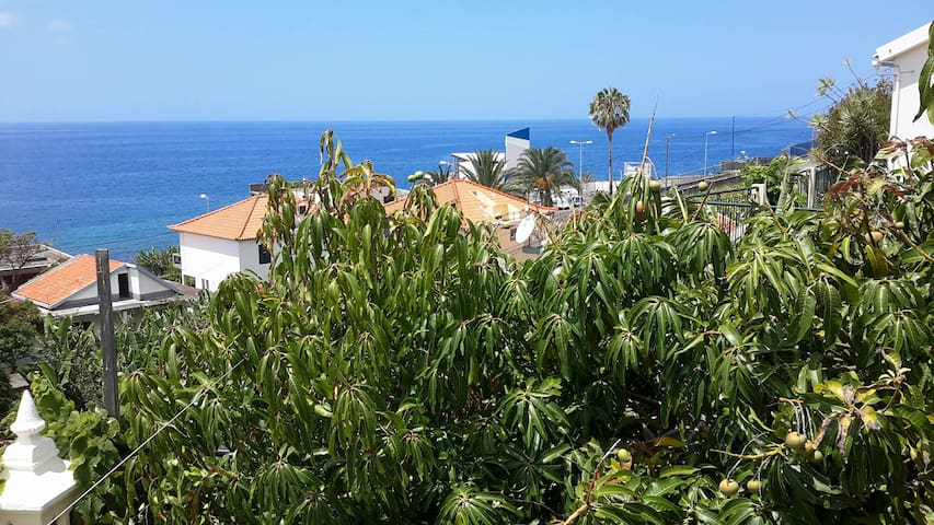 House in the middle of banana plantations - Madeira - Apartamento