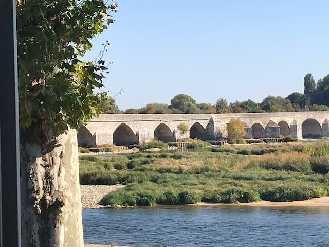 Beaugency, maison  familiale vue Loire
